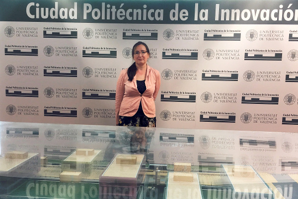 В Валенсии (Испания) прошла международная конференция «Congress on Numerical Methods in Engineering – CMN 2017» с участием представителя ИППТ СПбПУ