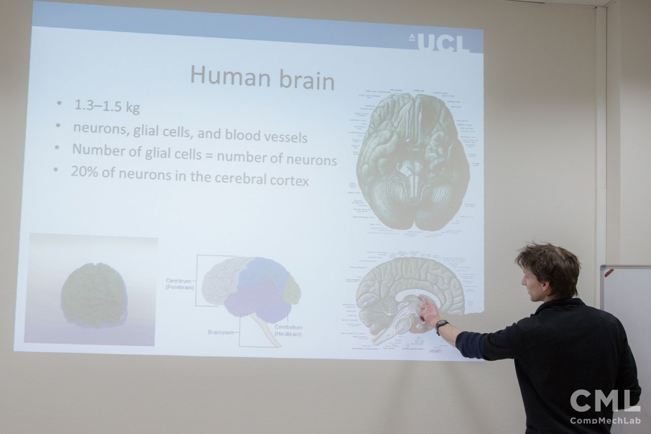 Кирилл Аристович прочитал студентам ИППТ курс лекций «Мозг человека и инжиниринг: от применений в медицине до беспилотных автомобилей»